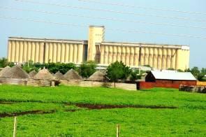 الاتحاد الأوروبي يخصص (8.6) مليون يورو للأمن الغذائي بشرق السودان