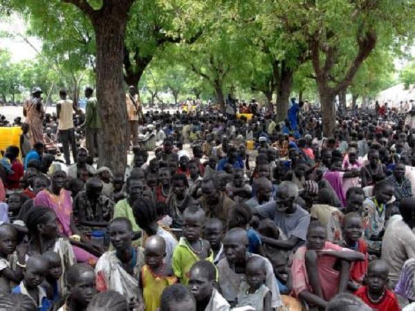 مجلس الأمن قلق من انتهاكات حقوق الانسان التى يمارسها الجيش والامن والمليشيات فى جنوب السودان
