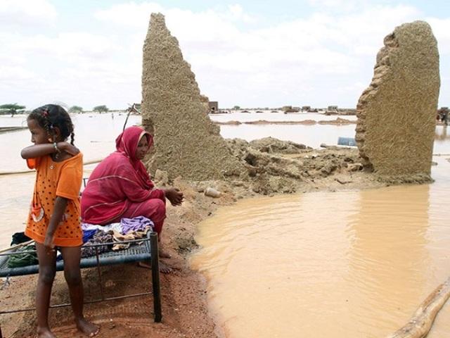"""ولاية النيل الابيض تعلن محلية """"قلي"""" منطقة كوارث"""
