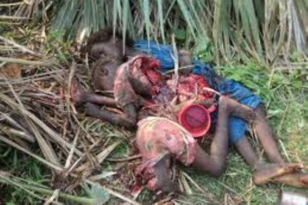 الحركة الشعبية تتهم القوات السودانية بقصف المدنيين عشية العام الجديد