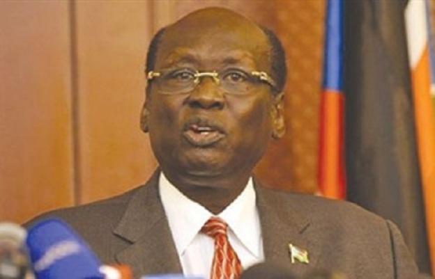 وزير خارجية جنوب السودان يؤكد دعم بلاده لمصر في ضمان حصتها من مياه النيل