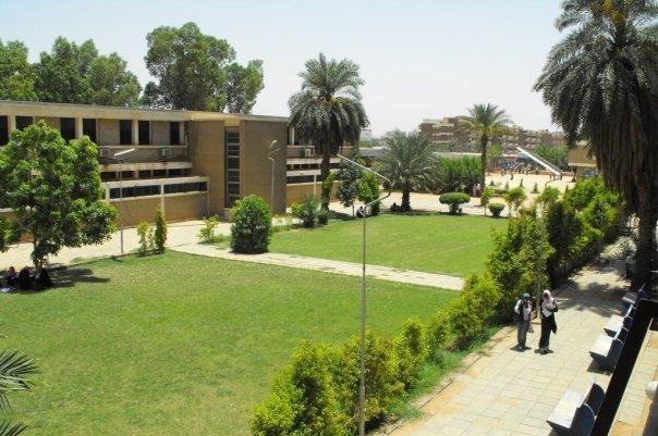 إستقالات جماعية لأساتذة فى كلية الهندسة بجامعة الأزهرى