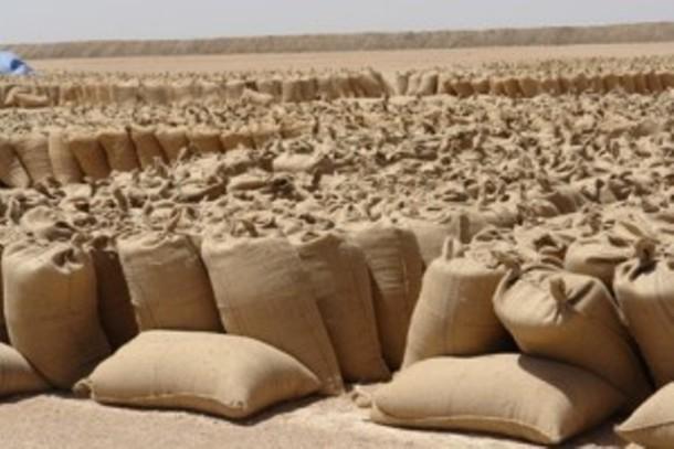 أزمة وقود تهدد الموسم الزراعى فى القضارف