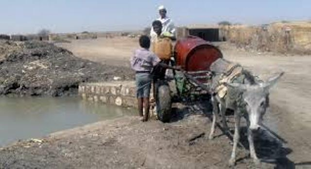 تدنى الفحص البكتيرى للمياه بخمسة ولايات