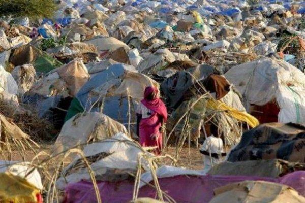 نقص حاد في الحبوب الغذائية بجنوب دارفور والوالي يستنجد بالمركز