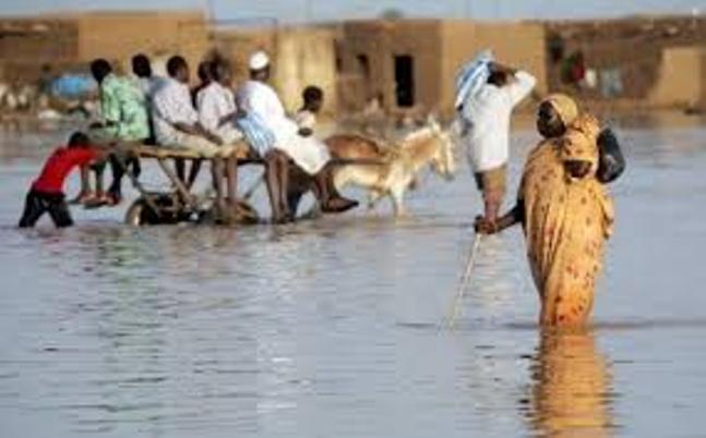 المنكوبون بالسيول والأمطار يستغيثون والحكومة غياب