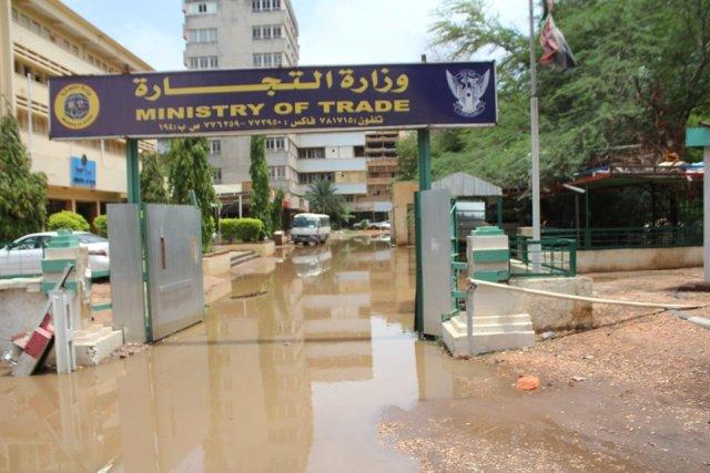 """مجلس الوزراء يرسم صورة مشرقة للأمطار والسيول ويعتبرها """" خير وبركة"""""""