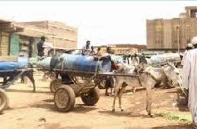 مأمون حميدة : 7140 عربة كارو تعمل في نقل المياه بالخرطوم تشكل خطرا علي حياة المواطنين