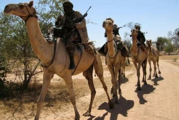 المليشيات الحكومية تغتصب ( 4) نساء بينهن قاصرة في دارفور