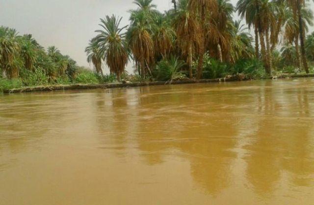ارتفاع مفاجئ فى مناسيب النيل
