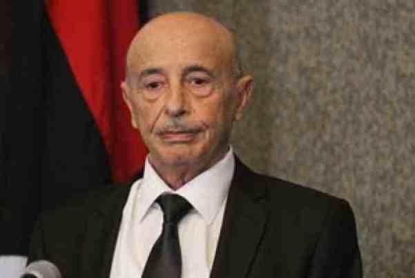رئيس برلمان ليبيا: تركيا وقطر والسودان تدعم جماعات معينة