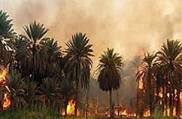 من أخبار صحف الخرطوم الصادرة صباح اليوم 16 نوفمبر