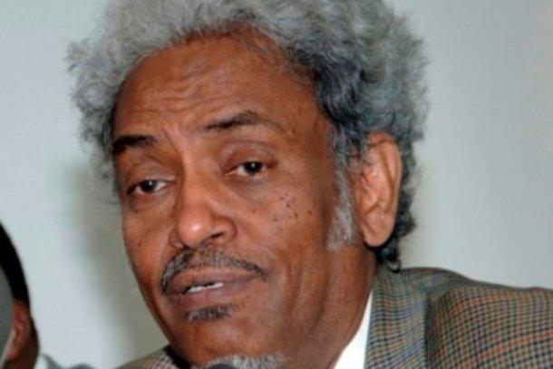رئيس وفد الحكومة في أديس أبابا: وثيقة الدوحة هي الاطار الوحيد لمناقشة قضية دارفور