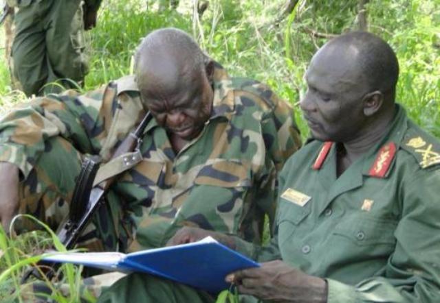 الجيش الشعبي يعلن دحره القوات الحكومية حول كادقلي