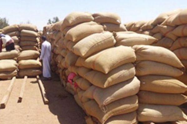 الصادرات غير النّفطية في السّودان؛ العودة إلى الجذور