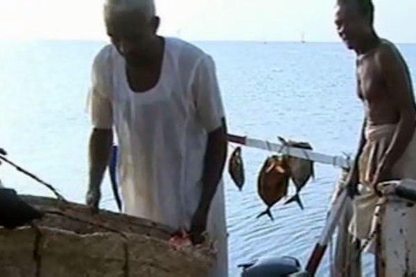 النرويج تدعم مصائد الاسماك في السودان بخمسة ملايين يورو