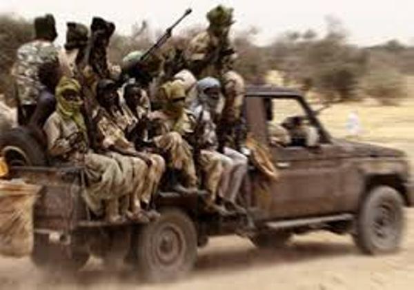 مسلحو موسى هلال يستولون على صناديق للاقتراع بشمال دارفور