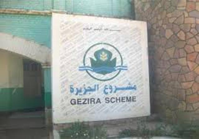 """""""الحِراك"""" يطالب البشير بإعفاء محافظ مشروع الجزيرة"""