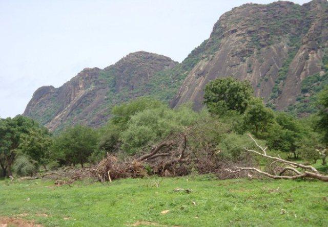 مرصد جبال النوبة: الجش الحكومي استخدم قنابل عنقودية