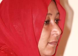 إنقاذ مقالاتي من تشويش ضياء الدين بلال!