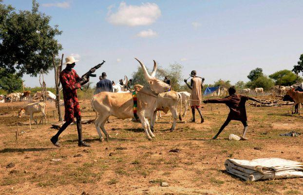 مواجهات مسلحة في يامبيو