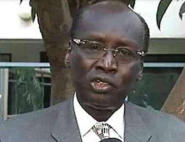 وزير خارجية الجنوب: نحن سودان واحد في دولتين