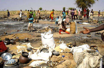 ينطلق اليوم : (50) مليار جنيه تكلفة إستفتاء دارفور