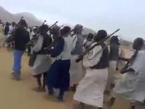 """رعاة يهددون مزارعين """"بالسلاح"""" فى البحر الاحمر"""