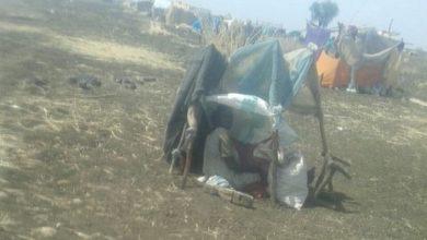 Photo of 5,4 مليون مواطن سوداني في حاجة لمساعدات إنسانية