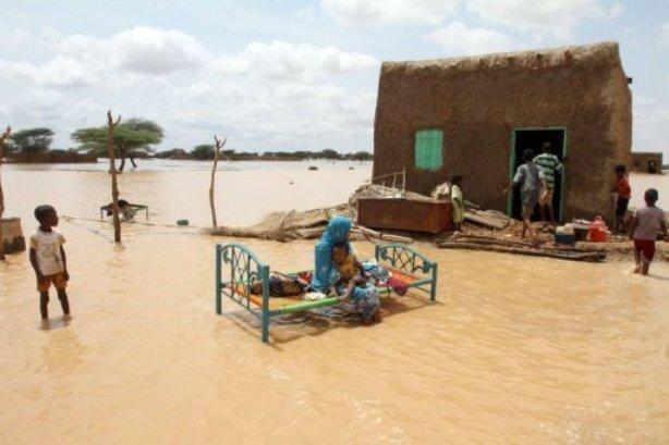"""مساعدات عاجلة من """" يونسيف """" لمتضرري  السيول والأمطار"""