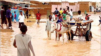 """صورة الفيضانات تغرق """"التمانيات"""" شمال بحري وخسائر كبيرة في الممتلكات"""