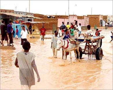 بركة يعزل طوكر وتحذيرات من أزمة غذائية