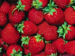 الخرطوم توقف استيراد الفواكه والخضروات المصرية