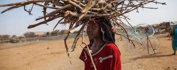 مائة شكوى بشأن اغتصاب أطفال في دارفور