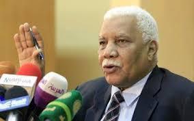 """احمد بلال : تصريحات المعارضة حول إسقاط النظام """"مجرد شعارات"""""""