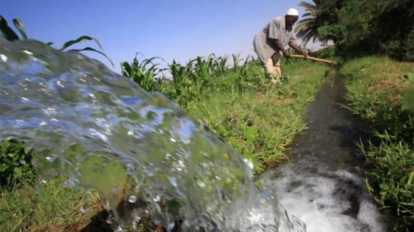 خوف على المياه بمصر من الزراعة الخليجية بالسودان