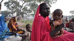 لجنة التضامن السودانية تطالب بتحويل حالة حقوق الانسان الى البند الرابع