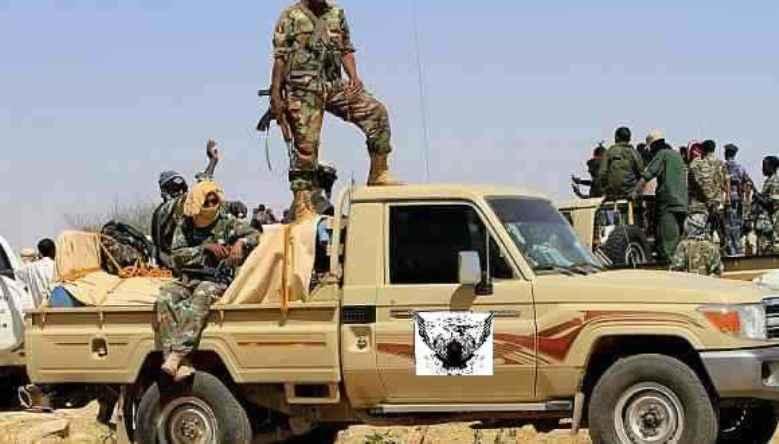 الحكومة تتجه لمصادرة 45 ألف  عربة بدارفور
