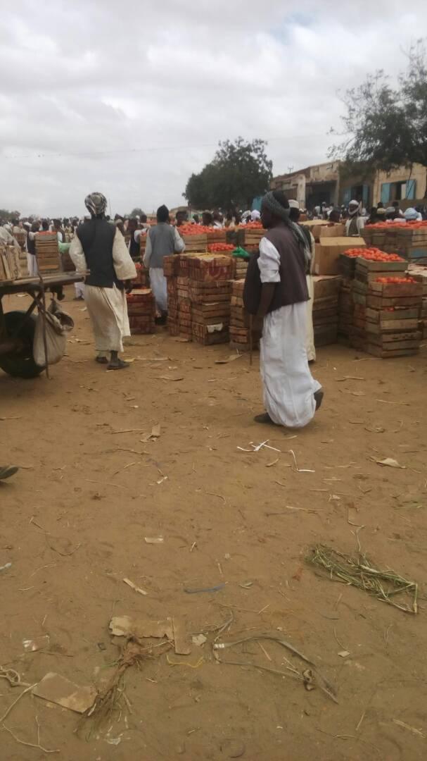 مزارعو طوكر يضربون عن بيع انتاجهم احتجاجا على الجبايات