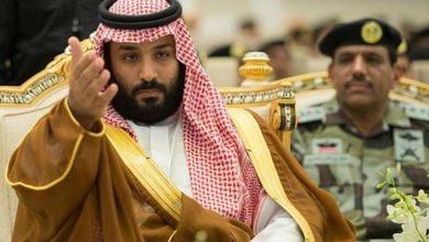 صورة المفكر الراحل فؤاد زكريا يرد على تصريحات الوزير السعودي الجبير