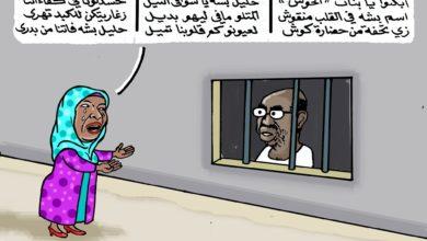 "Photo of شاعرة الميل أربعين وعنقاء المشروع الحضارى ""روضة الحاج"""