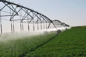 Photo of نهر النيل تنفي منح مستثمرين أجانب أراضي زراعية لمدة (٩٩) عاماً