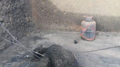 Photo of محلية الكاملين: حرق (17) منزلاً قرب قرية المعليق تخزن كميات من الذرة