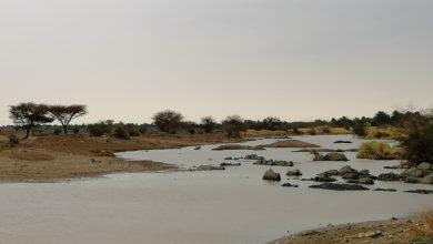 صورة السودان: إرتفاع ضحايا الإمطار إلى 211 قتيلاً وجريحاً