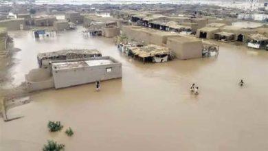 صورة مسؤول من (الفاو) يزور السودان لحشد الدعم لمتضرري الفيضانات