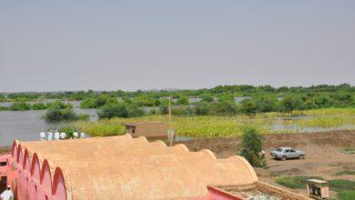 صورة وزارة الزراعة: (١٠٠) ألف فدان تضررت بالفيضانات في الخرطوم