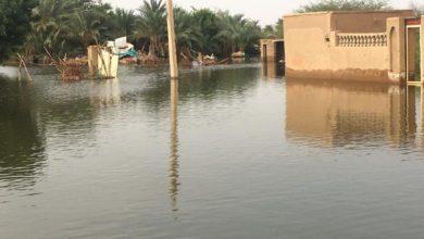صورة فيضان النيل يحيل في ساعتين قرية كاملة شمالي السودان إلى دمار