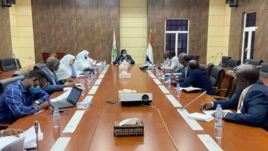 صورة السودان: طي الخلاف حول تمثيل الحركات المسلحة في الحكومة المرتقبة