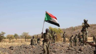 صورة وزير التنمية الاجتماعية يعلن دعمه للجنود السودانيين بـ «الفشقة»