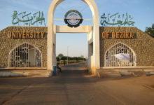 صورة السودان: عودة جزئية للدراسة بـ«جامعة الجزيرة»